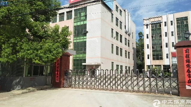 惠阳新圩原房东独院标准厂房