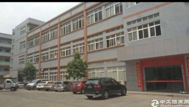 龙华周边独院厂房6250平方+宿舍2480平方出租