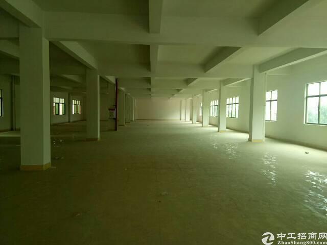 东莞塘厦新出原房东一楼2900㎡标准厂房