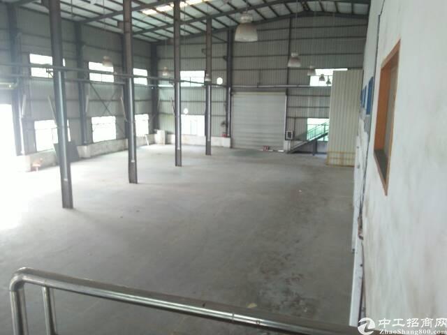 观澜滴水九米超高钢结构厂房出租