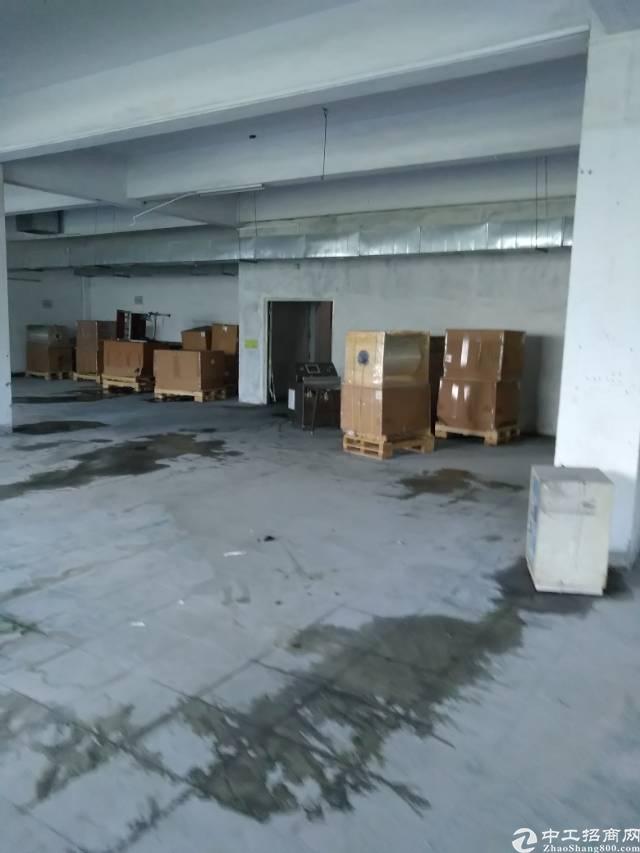 松岗沙浦围新出楼上200㎡带装修厂房