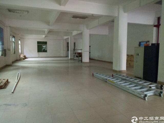 高埗镇冼沙新出标准厂房一楼