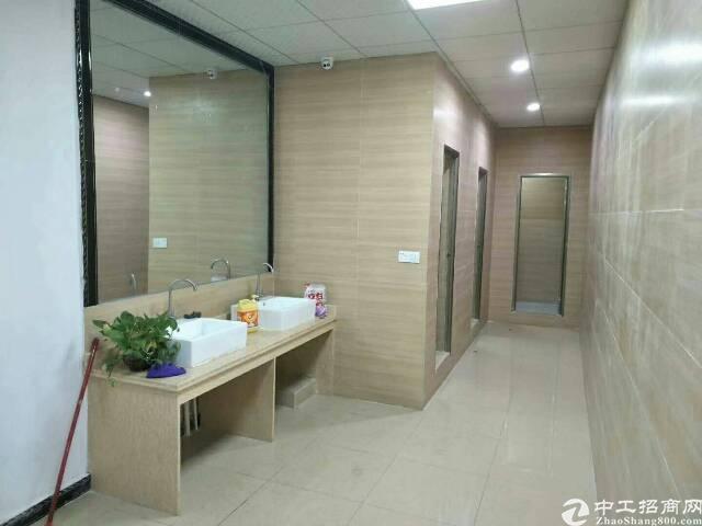 长安省道358旁边新出豪华装修厂房可做商业