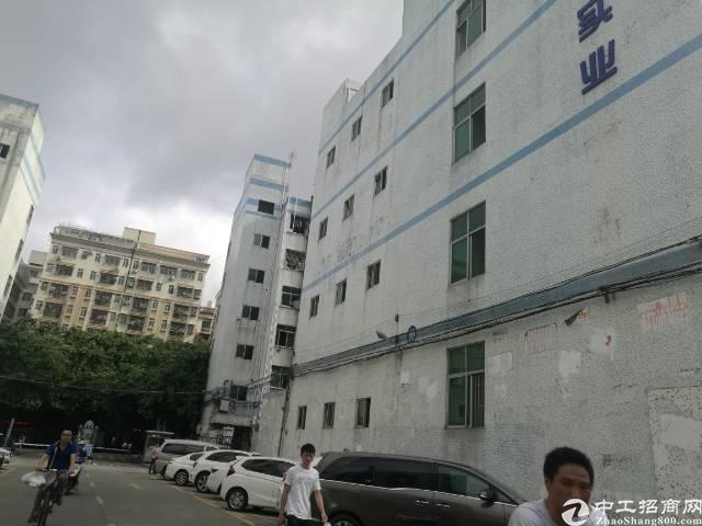 独门独院楼上整层1700平米厂房出租-图2
