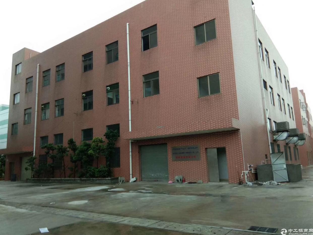 高埗新出园区独栋厂房3层2100平园区空地超大电2000