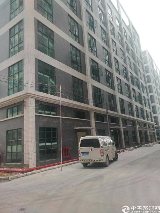 大岭山新出超性价比标准玻璃厂房,适合高新企业。