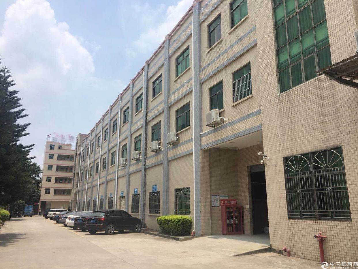 水口工业园区标准厂房稀缺一楼层高6米