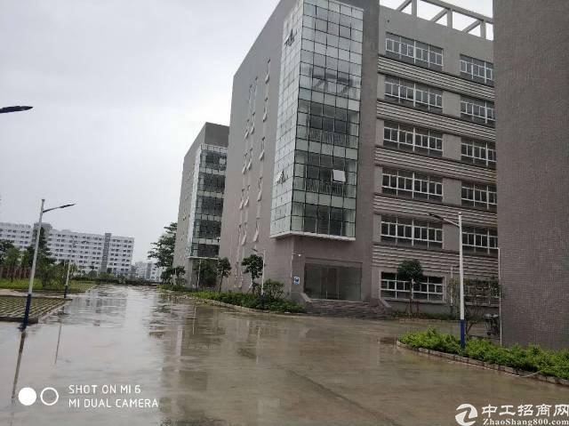 龙岗宝龙工业区新出单层面积5000平米厂房
