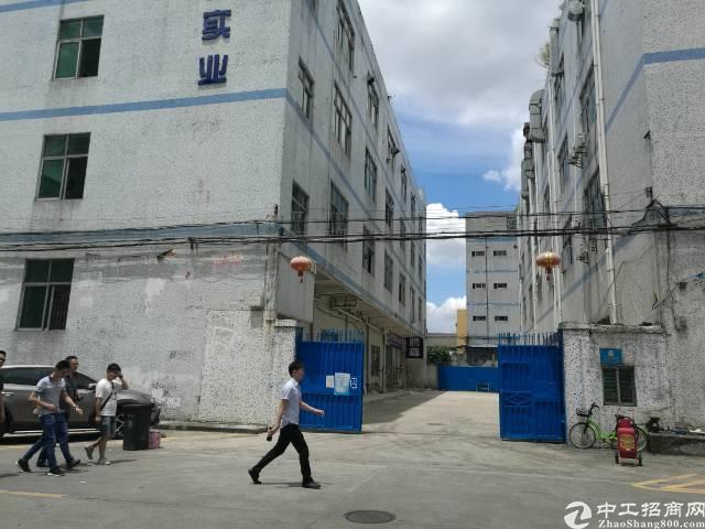 独门独院楼上整层1700平米厂房出租-图5