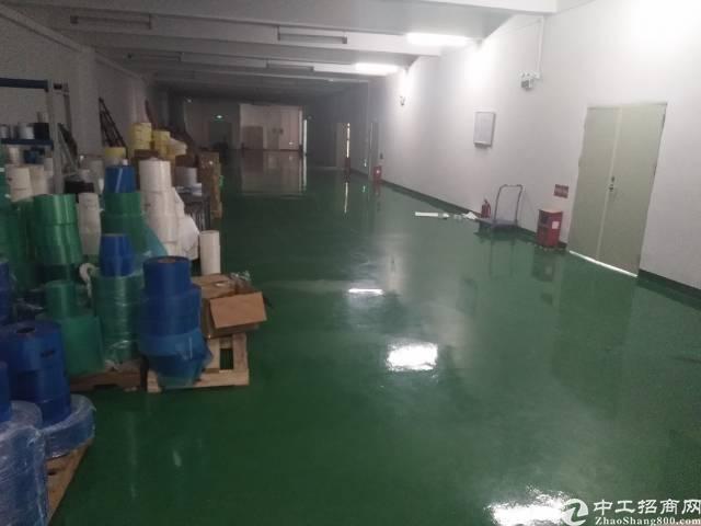 福永和平大型工业区楼上800平米厂房招租