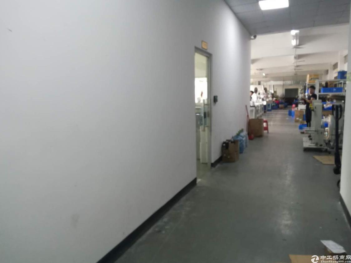 西丽白芒关口新出楼上1300平厂房出租-图4