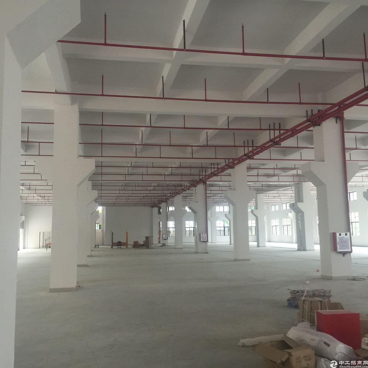 标准厂房位于东江成熟工业区带牛角,交通方便,配套设施齐全