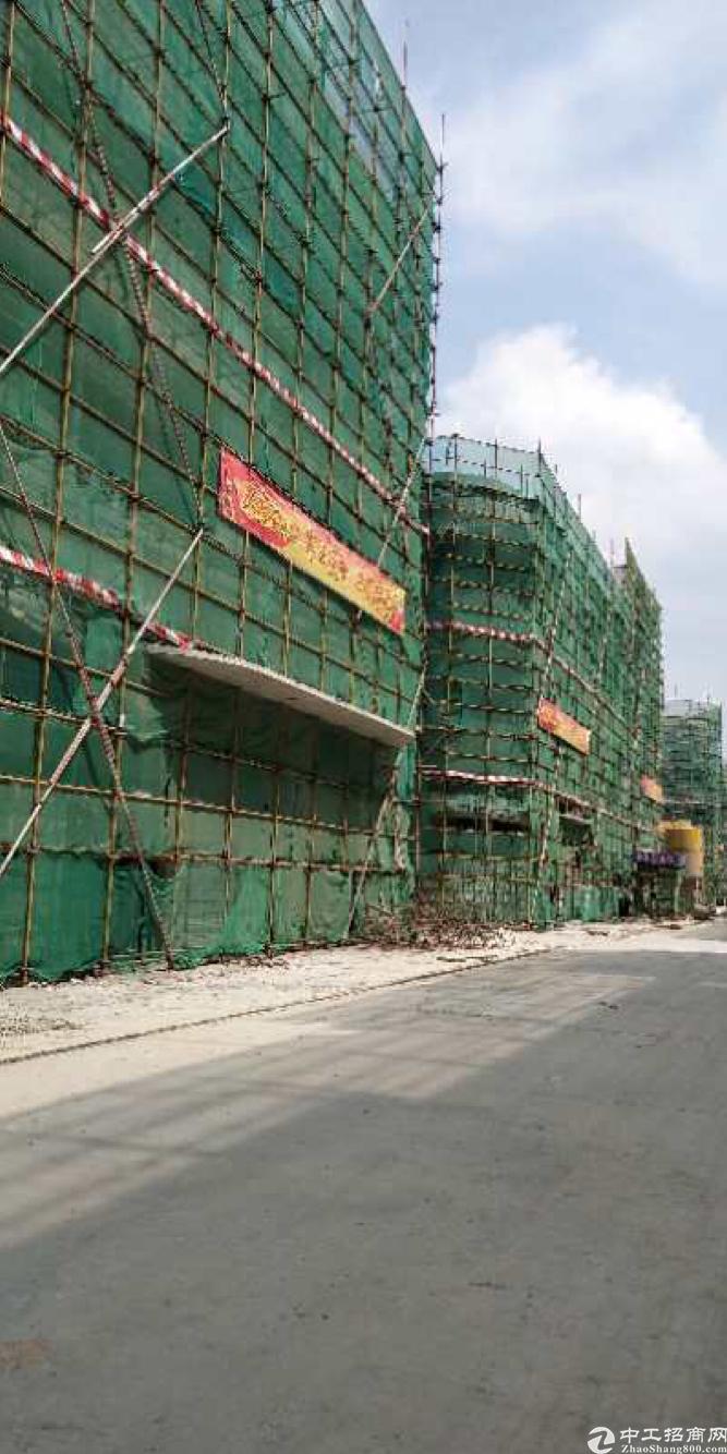 东莞谢岗谢常路边原房东新建红本厂房一栋起租可享受房租补贴