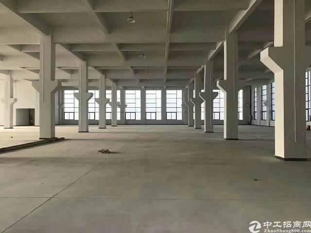 大岭山一楼带牛角8米高带行车1200厂房