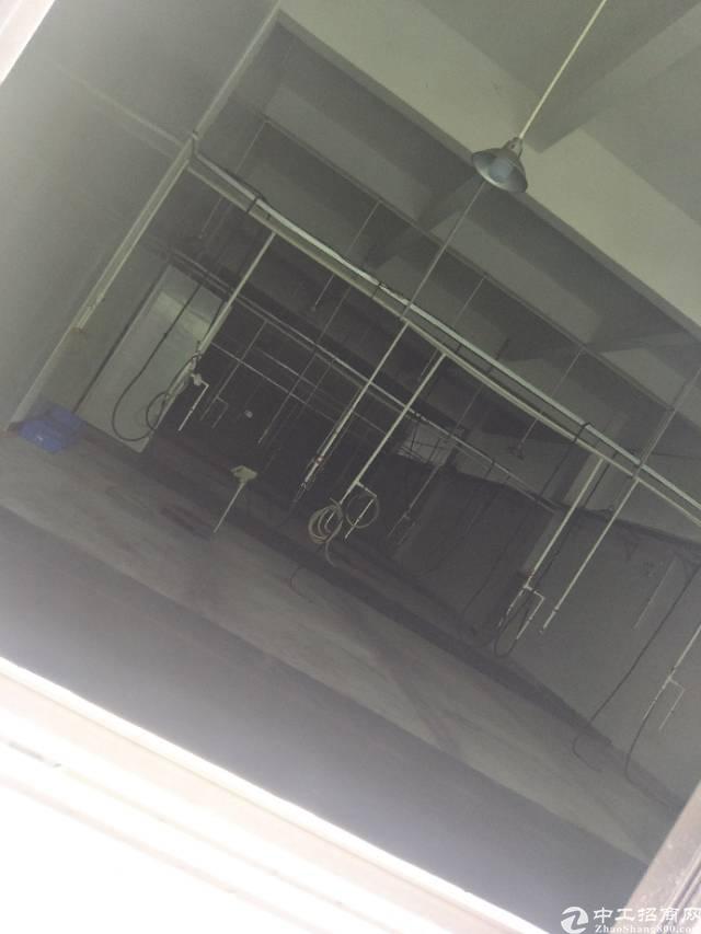企石新出现成CNC厂房一楼900平