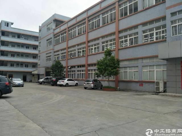 大岭山新出标准厂房有现成的地坪漆1-4层4600平方大小可分