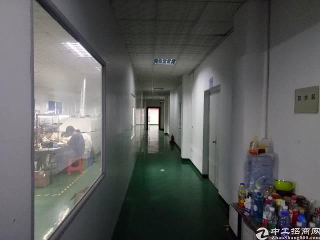 电子自动化客户秒杀厂房,全部带地坪漆