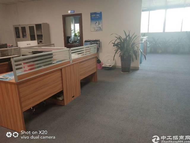 观澜带地坪漆带豪华办公室厂房