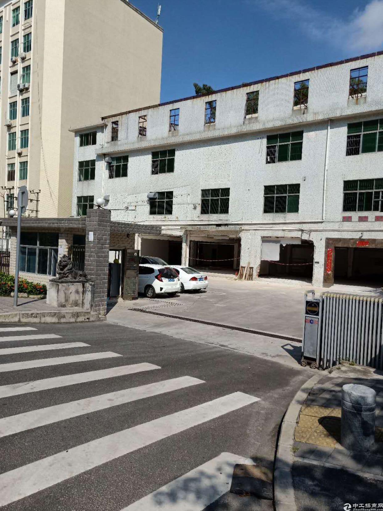 坂田杨美地铁站临街厂房可以做汽修车改装800平方可分租