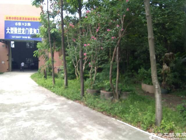 长安镇乌沙新出原房东独院钢构厂房1500平方,滴水 8米高