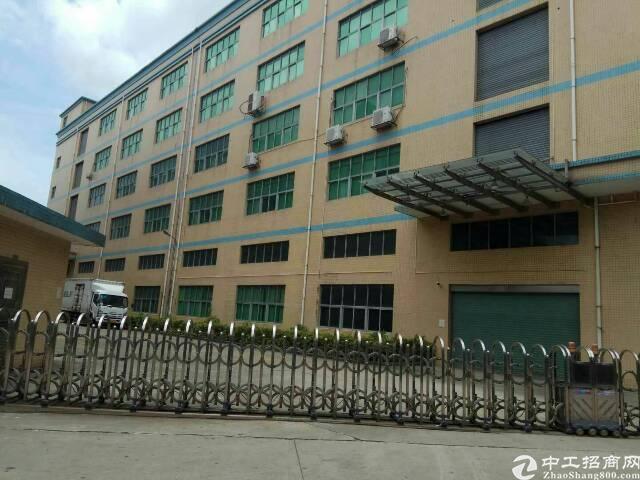 西乡洲石路边上新出厂房12532平米出租  另本公司在深圳
