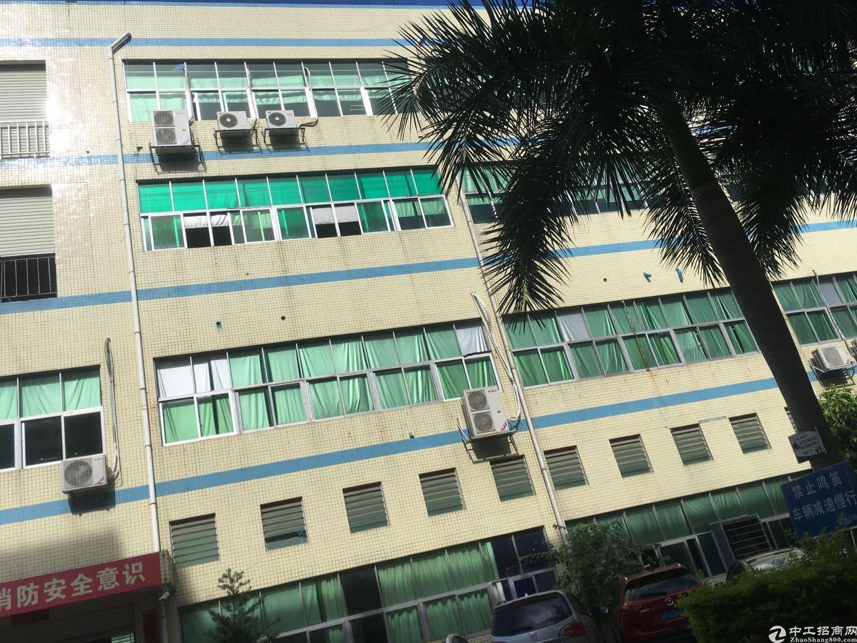 西乡鹤洲恒丰工业城旁,3楼1500平方,租金28元月。
