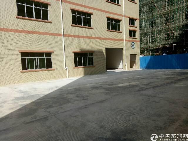 桥头原房东招租:只接受实业客户。全新独栋厂房6层,实际面积6