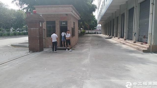 茶山镇独门独院厂房分租一楼