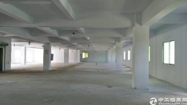 黄江镇田心村工业园内楼上3吨电梯分租600平出租