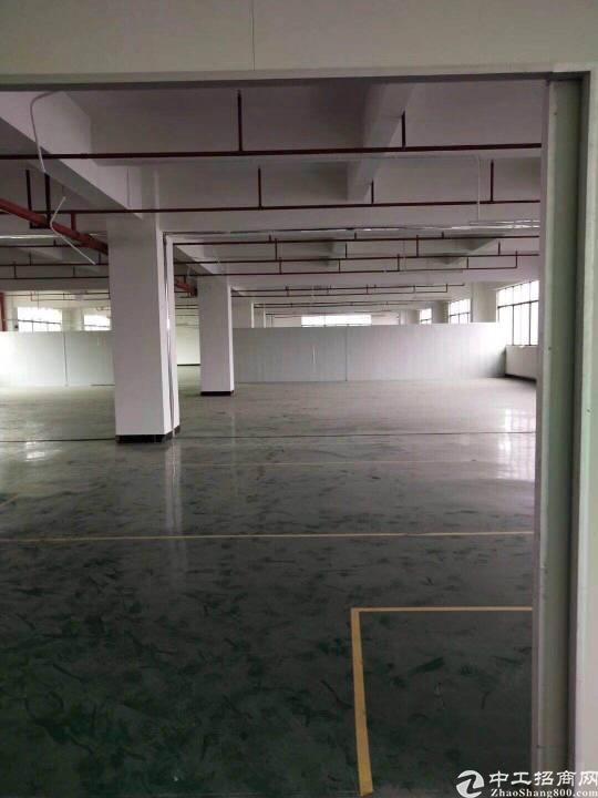 寮步镇精装修的厂房楼上1500平方,