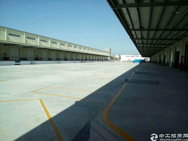 龙岗区平湖机荷高速出口新出一楼仓库3100平米,可分租