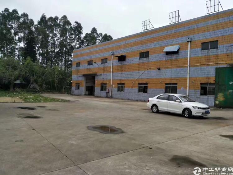 清溪镇大利高速口新空9米高钢结构厂房6200平方出租
