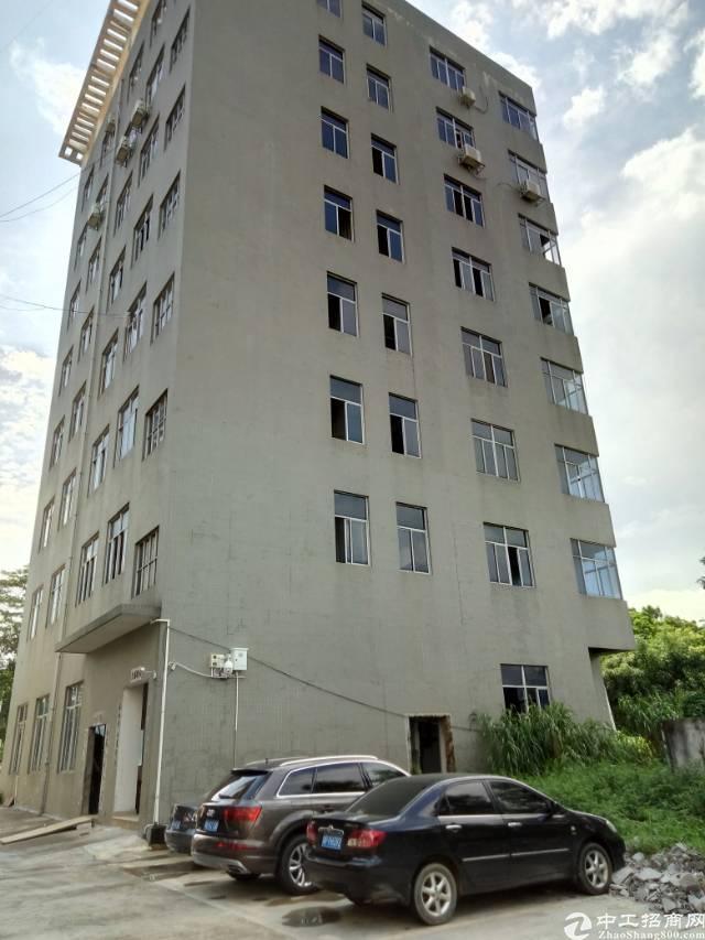 坪山原房东3.4楼各300平招租