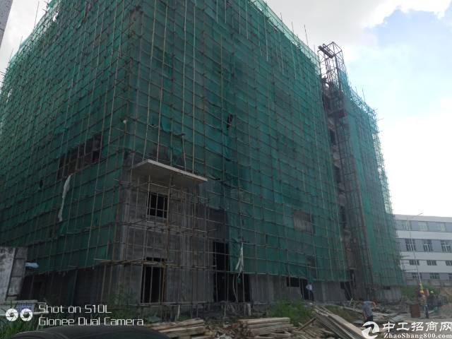 清溪原房东新建厂房五层一楼带牛角!每层800,8月15完工
