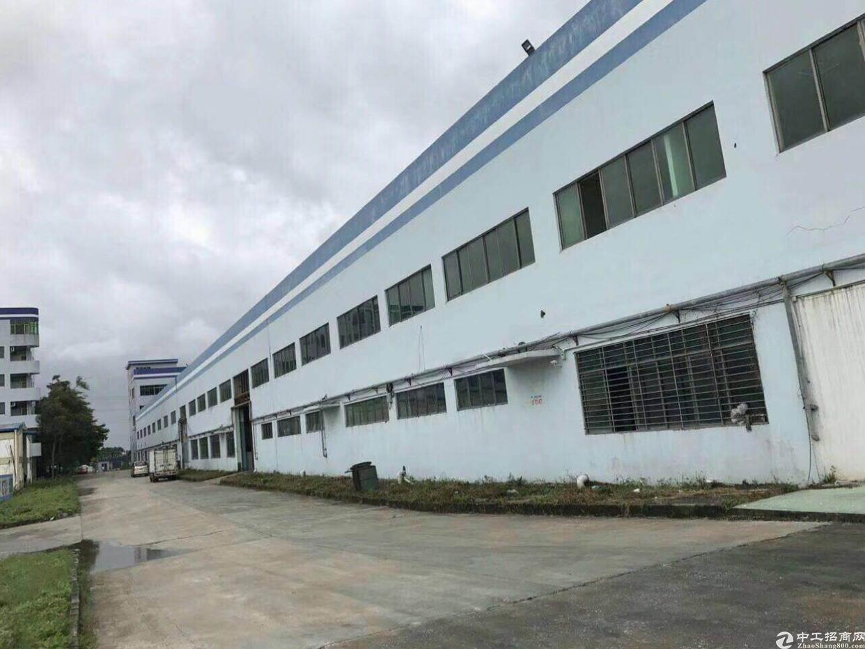 万江大型工业园区内单一层厂房招租,大小可分!电按需,可进拖头