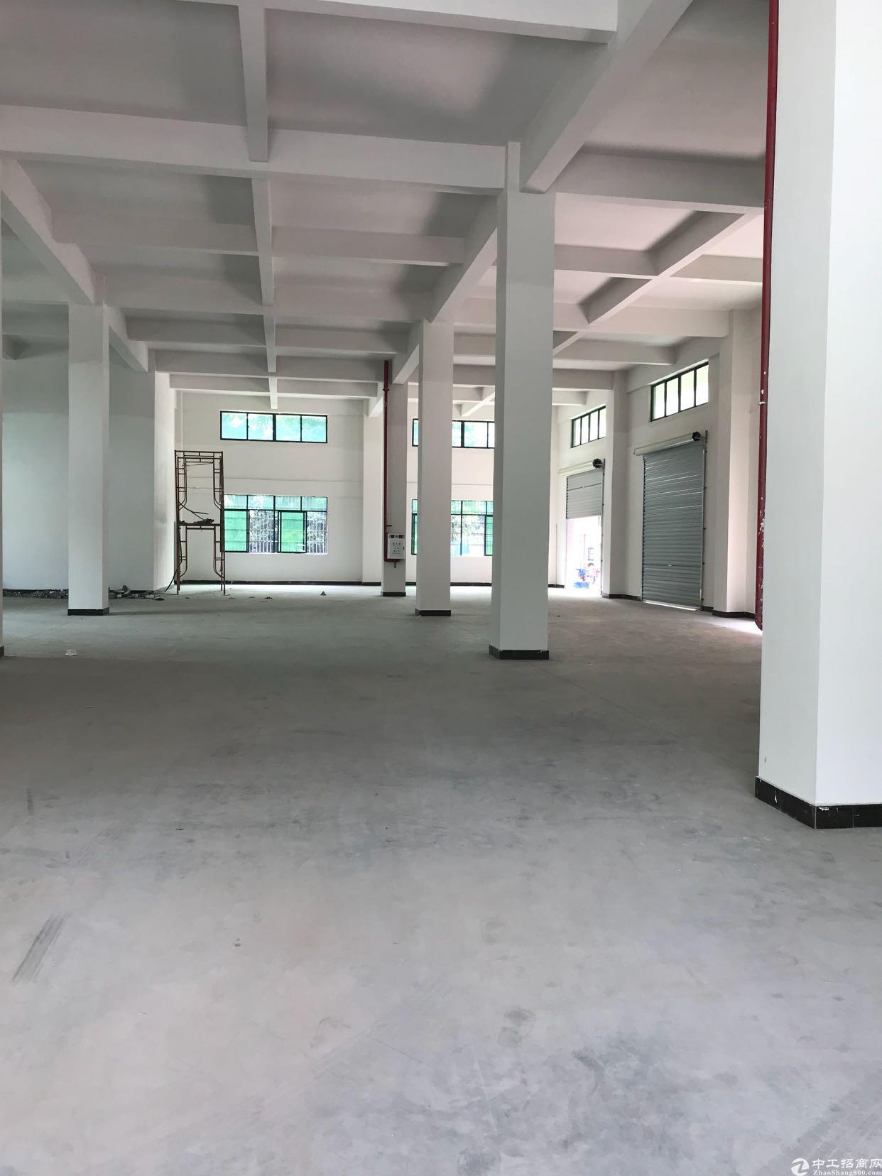 东莞市大朗镇6.5高标准厂房