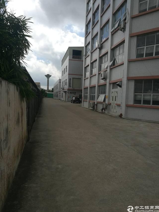 陈江工业园标准厂房出租2400平方,