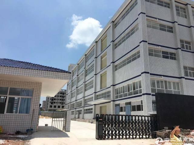 河源市全新红本厂房14800平方招租,带牛角,超低价,可分租