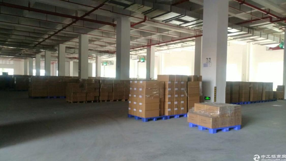 沙井主干道附近新出楼上2300平米厂房出租