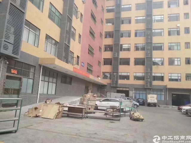 沙井  后亭村 楼上1100平米出租