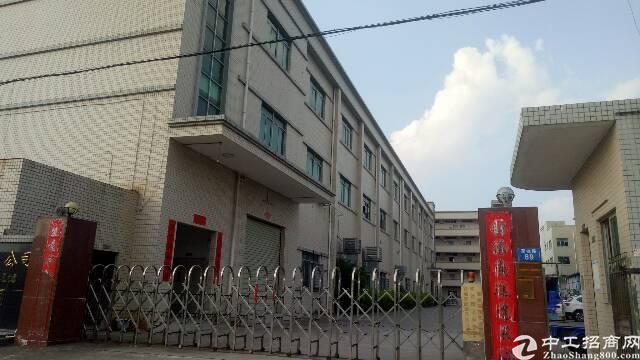 清溪新出楼上1600平米标准厂房采光好带电梯带装修出租