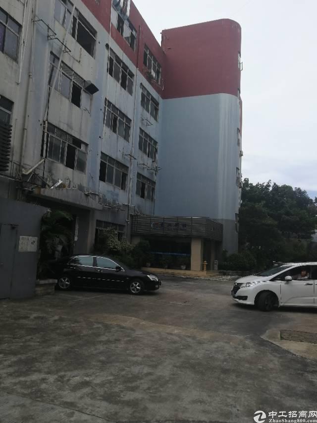 龙岗区横岗新出独院红本厂房整体对外招租