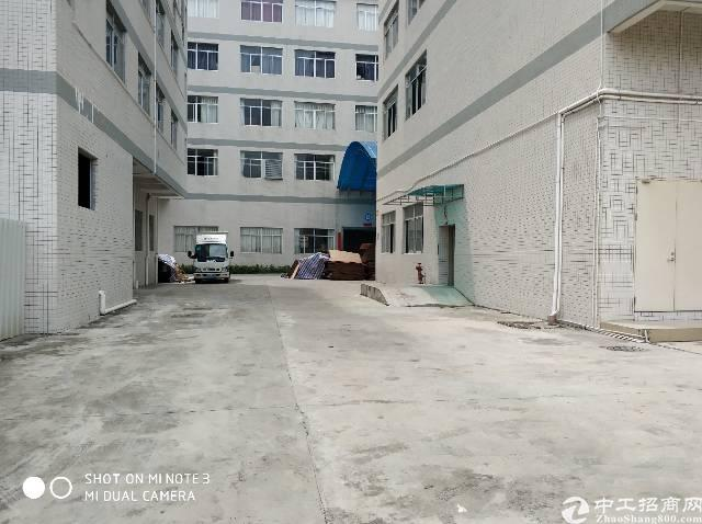 清溪新出国有镇红本 厂房出租,共 70000平米,大小可分租