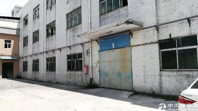清溪原房东钢构厂房1400平方