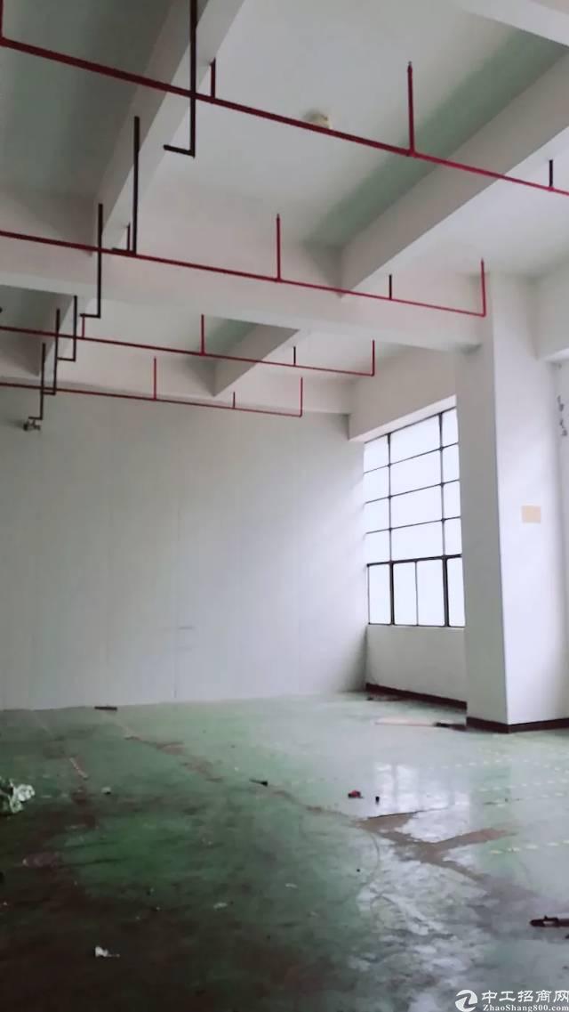 光明新区公明镇将石新出楼上标准厂房