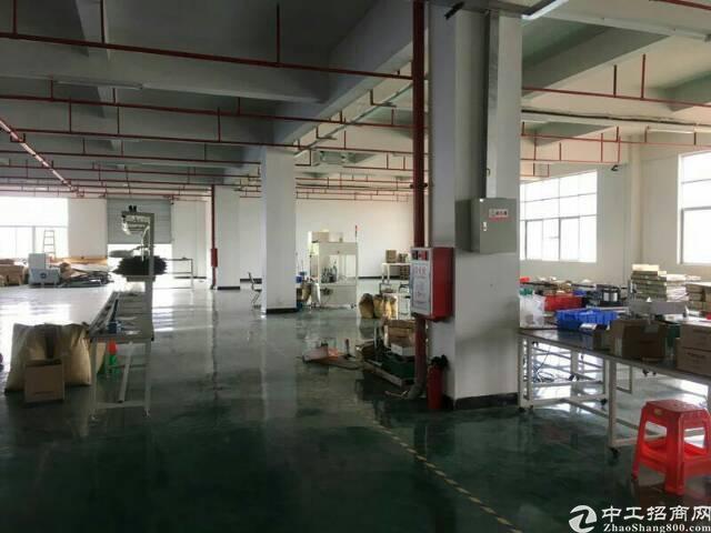大岭山镇独栋标准厂房
