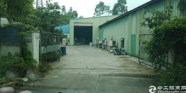 大岭山独门独园厂房6500-600平米