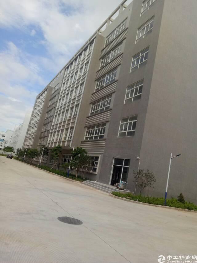 深圳周边小面积厂房1000出售
