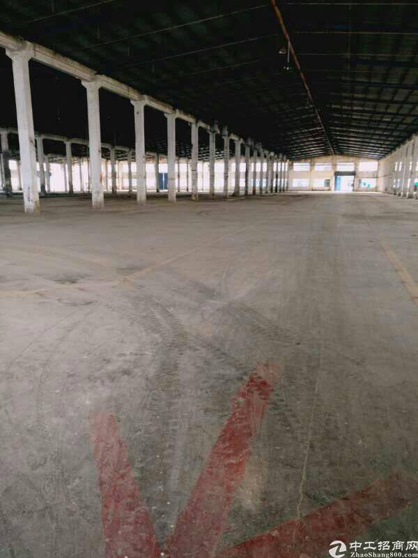 1.5万平米独院厂房滴水12米高