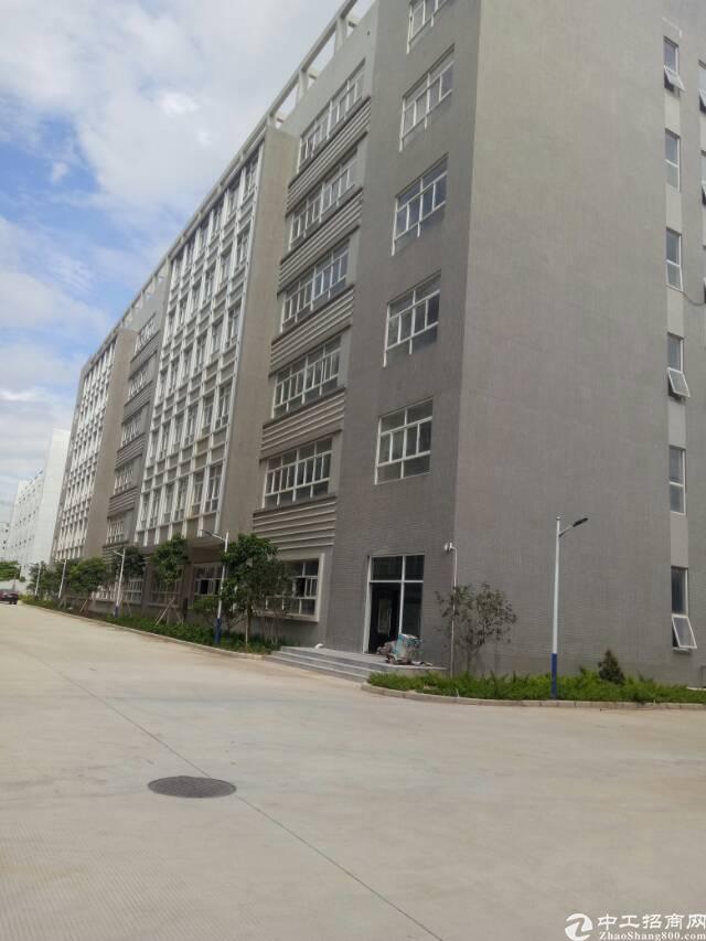 深圳宝安高速路口附近新出优质厂房出售